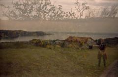 Autumn fig landscape in Slovenia (lumpy79) Tags: autumn fig landscape slovenia smena 8m 40mm f4 t43 triplet fujicolor c200 expired 2007 shot 2018 100 double exposure epsonv500 film