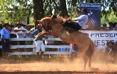Luiz D C A Vianna (Eduardo Amorim) Tags: gaúcho gaúchos gaucho gauchos cavalos caballos horses chevaux cavalli pferde caballo horse cheval cavallo pferd pampa campanha fronteira quaraí riograndedosul brésil brasil sudamérica südamerika suramérica américadosul southamerica amériquedusud americameridionale américadelsur americadelsud cavalo 馬 حصان 马 лошадь ঘোড়া 말 סוס ม้า häst hest hevonen άλογο brazil eduardoamorim gineteada jineteada