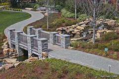 IMG_5517 (Roger Kiefer) Tags: dallas arboretum outdoors beauty nature landscape