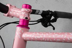 4U0A7774.jpg (peterthomsen) Tags: pink chrisking coveypotter scrambler steel envecomposites nahbs caletti