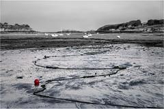 IMGP1329 (lionel.perrot) Tags: bouée bretagne mer bateau noir blanc rouge graphique paysage grève sable