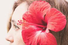 2- Detalles veraniegos (Letua) Tags: seasons2019 autorretrato detalles flor flower hibisco hibiscus naturaleza nature one red rojo rosachina selfportrait summer una uno verano yo