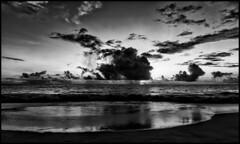 After sunset in the ocean / После заката в океане (dmilokt) Tags: природа nature пейзаж landscape море sea пляж beach песок sand пальма palm небо sky облако cloud dmilokt чб bw черный белый black white закат рассвет восход sunset sunrise nikon d850