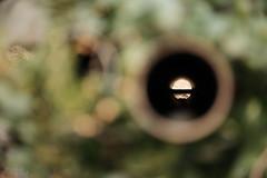 なにかはわからない (atacamaki) Tags: xt2 50140 xf f28 rlmoiswr fujifilm jpeg撮って出し atacamaki japan ibaraki kasumigaura かすみがうら hole shape color