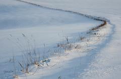 The Curve (littlenorty) Tags: england europe feisoltripod fujixt3 gear lambourn landscape nature objects oxfordshire seasons signs snow sun sunset tripod type unitedkingdom weather winter fuji1655