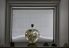 winter window (zawaski -- Thank you for your visits & comments) Tags: alberta serves beauty 4hire naturallight noflash canada zawaski©2019 calgary love ambientlight lovepeace editing canonef2035mmf3545usm