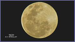 the biggest and the brightest of 2019.... (Jinky Dabon) Tags: canonpowershotsx170is moon lunar luna lunareclipse fullmoon totallunareclipse newmoon 19thfebruary2019 19february2019 supermoon stargazing earth'snaturalsatellite sun earth sky orbit februarymoon stormmoon supersnowmoon icemoon skywatchers faithandprotectioninthelightyears