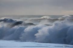 The Sea Trolls (Sophie Carr Photography) Tags: sea waves crashingwaves reynisfjara vik iceland