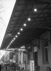 Rampenlicht (photogunni) Tags: olympus penft kodaktmax400 arsimagofd