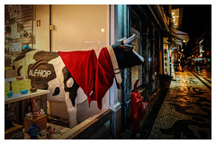 cow through the shop window (Mallybee) Tags: cow street streetphoto colour fuji fujifilm xa1 1545mm f3556 night apsc bayer xmount dark danabee dxo filmpack5