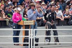 Calgary Stampede 2016 (tallhuskymike) Tags: calgary stampede event calgarystampede cowboy cowgirl 2016 rodeo outdoors greatestoutdoorshow prorodeo alberta