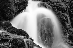 2017 Roughlock Falls In Monochrome 26 (DrLensCap) Tags: roughlock falls in monochrome spearfish canyon scenic drive black hills national forest south dakota sd waterfall bw and white 40 day adventure robert kramer