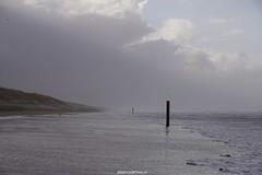 DSC02772 (ZANDVOORTfoto.nl) Tags: zandvoort edwin keur fotografie aan zee strand nederland netherlands kust coast shore beach beachlife strom stormy weather stormyweather wind hardwind sandstorm