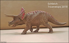 Triceratops--Schleich--007