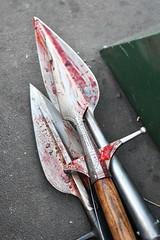 EEF_7675 (efusco) Tags: boar medieval spear brambleschoolearteofthehunt bramble schoole military arts academy florida ferel hog pig