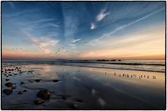 Malibu Sunset. (drpeterrath) Tags: sunset sunrise malibu sun sky clouds birds water ocean sand beach pacific losangeles california calilife landscape seascape