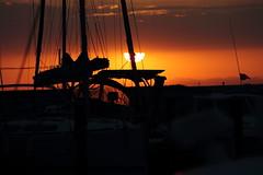Sunrise en camargue (Kanard Coulé) Tags: lever de soleil camargue