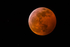 Super Blood Wolf Moon (stephaniepluscht) Tags: louisiana super blood wolf moon lunar eclipse full