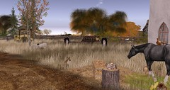 Farmland (Osiris LeShelle) Tags: secondlife second life mystic timbers landscape horse farm autumn nature pasture