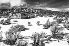 Dinosaur, Colorado (paccode) Tags: wreck d850 landscape winter bushes brush serious quiet snow clouds grass shed abandoned barn monochrome shack hills house colorado home scary solemn forgotten blackwhite creepy maybell unitedstates us