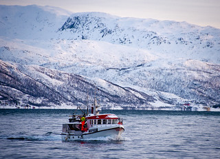Pesca d'hivern / Winter fishing