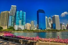 Benjakiti park and lake with skyline in Bangkok, Thailand (UweBKK (α 77 on )) Tags: benjakiti park lake flower water skyline architecture city urban cityscape skyscraper building sky blue bangkok thailand southeast asia sony alpha 77 slt dslr