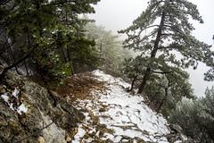 0017_GOPR4756 (marcellszmandray) Tags: ausztria hohewand gutensteinialpok alpok viaferrata kirándulás tavasz hó gebirgsvereinsteig