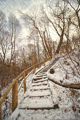 David Balfour Park Trail (A Great Capture) Tags: agreatcapture agc wwwagreatcapturecom adjm ash2276 ashleylduffus ald mobilejay jamesmitchell toronto on ontario canada canadian photographer northamerica torontoexplore fall autumn automne herbst autunno otoño 2017 efs1018mm 10mm wideangle cold snow weather eos digital dslr lens canon natur nature naturaleza natura naturephotography naturethroughthelens scenery scenic sky himmel ciel bluesky outdoor outdoors outside vibrant colorful cheerful vivid bright neige schnee trail path route walkway clouds rebel t5i stairs curve yellow creek ravine david balfour park