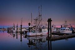 Moored boats (rdpe50) Tags: landscape river dock water fraserriver boats fishing bluehour steveston richmond bc