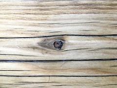 Wood Eye (cogdogblog) Tags: eye wood