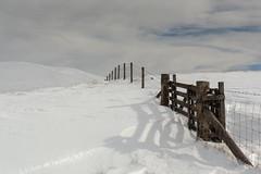 Over the hill and far away.. (Douglas Hamilton ( days well spent )) Tags: ochils winter scotland snow fence hills hiking clackmannanshire outdoors landscape nikon d5200 douglas hamilton uk rural clouds march
