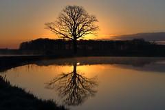 IMG_0397 (geraldtourniaire) Tags: canon natur nature landschaft licht l sonnenaufgang 6d eos6d 70200l 70200mm franken mittelfranken