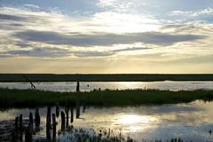 Oosterschelde (Omroep Zeeland) Tags: rattekaai hoog water vloed getijdenhaventje oosterschelde meerpalen rijksmonument