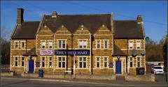 The White Hart (Lotsapix) Tags: northamptonshire corby pub inn tavern ale alehouse building architecture
