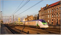 IZY 3224 + 3213 @ Ruisbroek (Wouter De Haeck) Tags: belgië belgique belgien infrabel l96n brusselzuid halle vlaamsbrabant sintpietersleeuw ruisbroek thalys izy tgv tmst transmanchesupertrain e300 gecalsthom bn paris parisnord