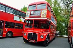 RM2033 ALM33B (PD3.) Tags: bus buses coach psv pcv preserved september 2018 showbus show castle donington derby park rm2033 rm 2033 alm33b alm 33b aec routemaster london transport