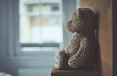 Nostalgia... (esterc1) Tags: teddy osito juguete nostalgia niñez
