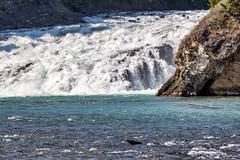 Bow Falls, Bow River, Banff, Alberta (Jim 03) Tags: banff resort town alberta national park bow falls river spray springs hotel valley glacier water blue jim03 jimhoffman jhoffman jim wwwjimahoffmancom wwwflickrcomphotosjhoffman2013