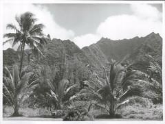 A view of Mount Te Targu (on the left) and Mount Te Vaakauta (on the right), Rarotonga 1969