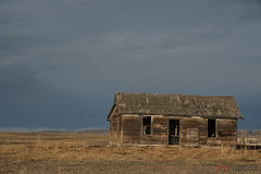 House On The Prairies (Neil Young Photography (nyphotos.ca)) Tags: house decaying abandoned neglected country alberta canada queenstown nikon d700 fotoman nyphotos neilyoung neilyoungphotography rural ruraldecay