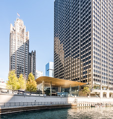 Chicago RIver DSC04651 (nianci pan) Tags: chicago illinois urban city cityscape architecture buildings river chicagoriver urbanlandscape landscape sony sonya7rii nianci pan