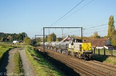TUC-Rail 7804 Sint-Martens-Bodegem (TreinFoto België) Tags: 77 7804 infrabel tucrail lessines 93700 zandvliet antwerpen sintmartensbodegem lijn 50 belgium belgien belgië belgique