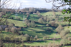 Long shadows (Halliwell_Michael ## Offline mostlyl ##) Tags: brighouse hoveedge redbeckvalley westyorkshire nikond40x 2019 trees baretrees landscapes green shadows