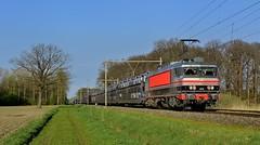 2017 100506  NL (Maarten van der Velden) Tags: nederland netherlands niederlande paysbas paísesbajos paesibassi helvoirt raillogix railogix1618 ns1618 nsserie1600 serie1600 ns1600 train46268