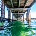 St Leonards Pier Underwater-34