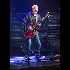 Peter Frampton at the Grand Ole Opry House (J.L. Ramsaur Photography) Tags: jlrphotography nikond7200 nikon d7200 photography photo nashvilletn middletennessee davidsoncounty tennessee 2018 engineerswithcameras musiccity photographyforgod thesouth southernphotography screamofthephotographer ibeauty jlramsaurphotography photograph pic nashville downtownnashville capitaloftennessee countrymusiccapital tennesseephotographer concert rocknroll rockroll frampton guitaristpeterframpton liveconcert rockconcert rocknrollconcert peterframpton grandoleopryhouse lights music classicrocknroll classicrock opryhouse thegrandoleopryhouse opry grandoleopry guitar guitarist musician performer portrait portraiture rocknrollportrait portraitphotography