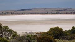 0421 Salzsee - salt lake; Bumbunga, Lochiel (roving_spirits) Tags: australia australien australie southaustralia