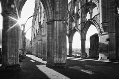 (saavedl) Tags: ruins architecture arch structure building column past history exterior day nature sunlight spirituality belief place worship arcade ancient outdoors colonnade abbey monochrome blackandwhite religion