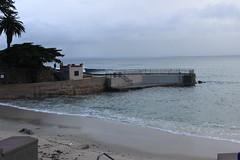 IMG_9758 (mudsharkalex) Tags: california pacificgrove pacificgroveca loverspointpark loverspointbeach beach
