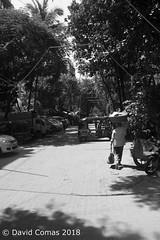Mumbai - Juhu (CATDvd) Tags: nikond7500 bhāratgaṇarājya india índia bombai bombay mumbai maharashtra republicofindia repúblicadelíndia repúblicadelaindia भारतगणराज्य september2018 catdvd davidcomas httpwwwdavidcomasnet httpwwwflickrcomphotoscatdvd juhu